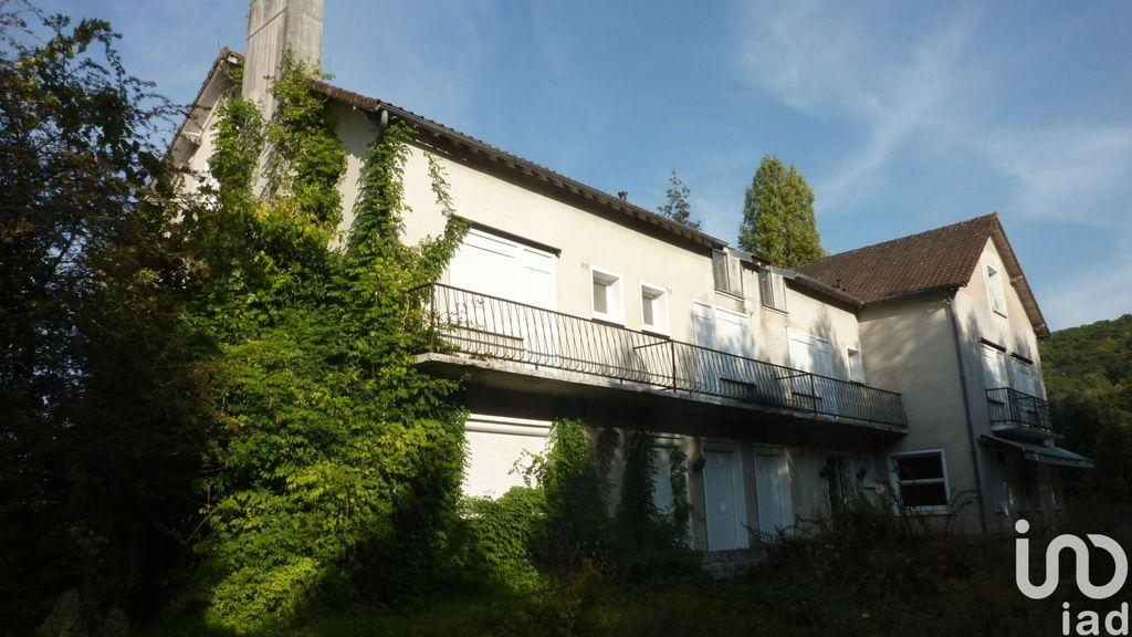 Achat maison 10chambres 670m² - Saint-Julien-du-Sault